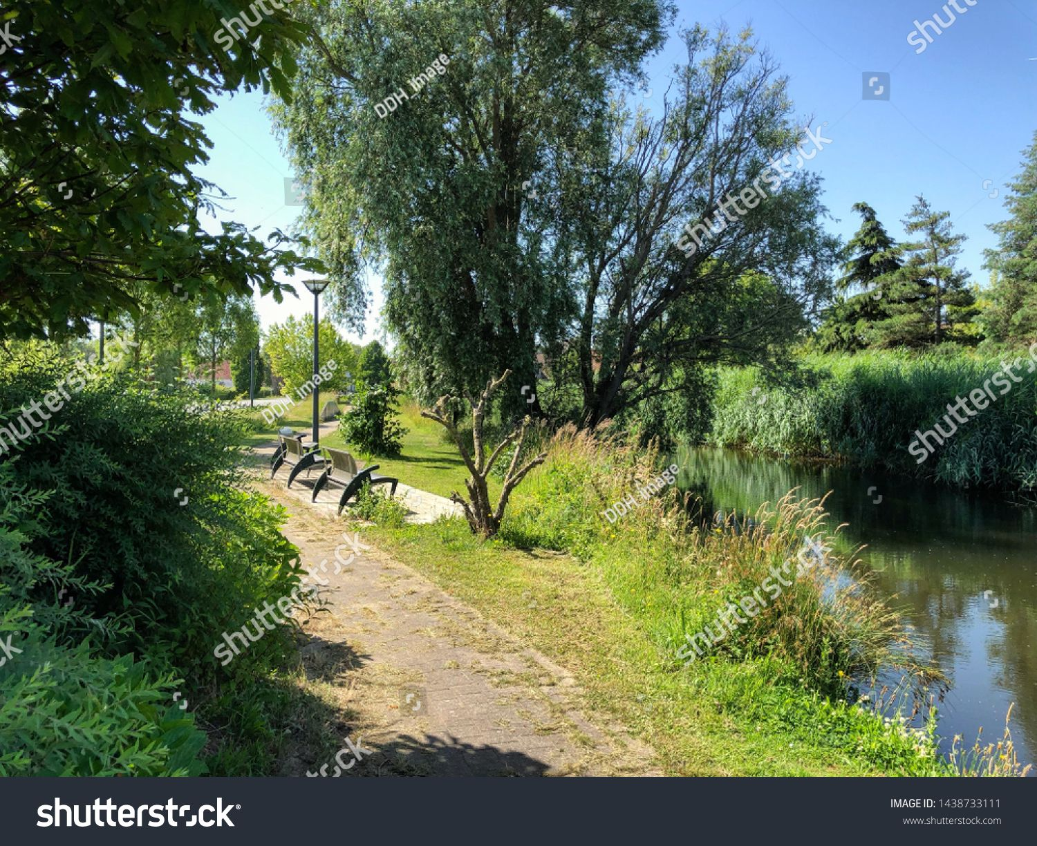 Outdoor Green Park Forest Next To River Rural Landscape Path With Trees And Grass And Modern Benche Sponsored Affiliate Fo Green Park Outdoor Park Forest