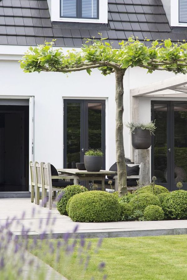 Pingl par thai huyen sur maison de mavvy pinterest terrasses jardins et ext rieur - Solution pour ombrager terrasse en plein soleil ...