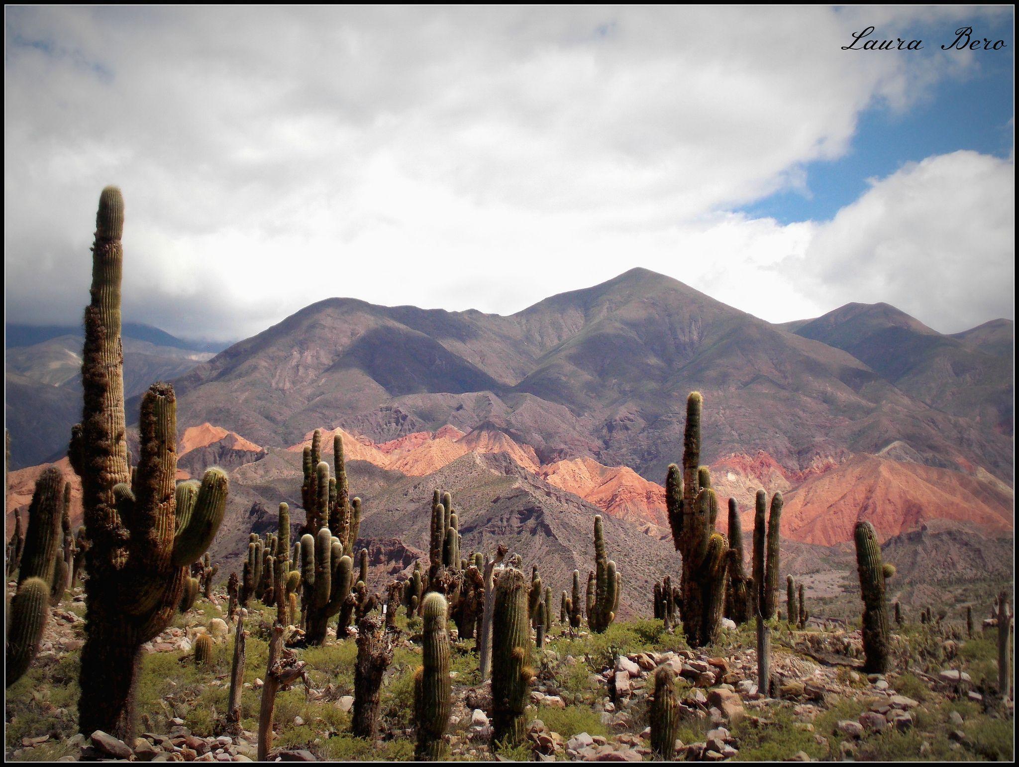 Me gusta Jujuy | Natural landmarks, Travel, Landmarks