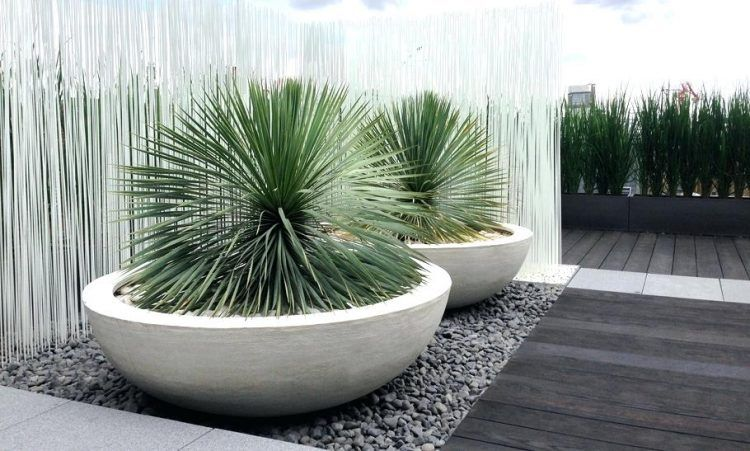 Making Big Concrete Planters Making Large Concrete Planters Diy Large Round Concrete Planters Contemporary Planters Concrete Planters Large Garden Pots