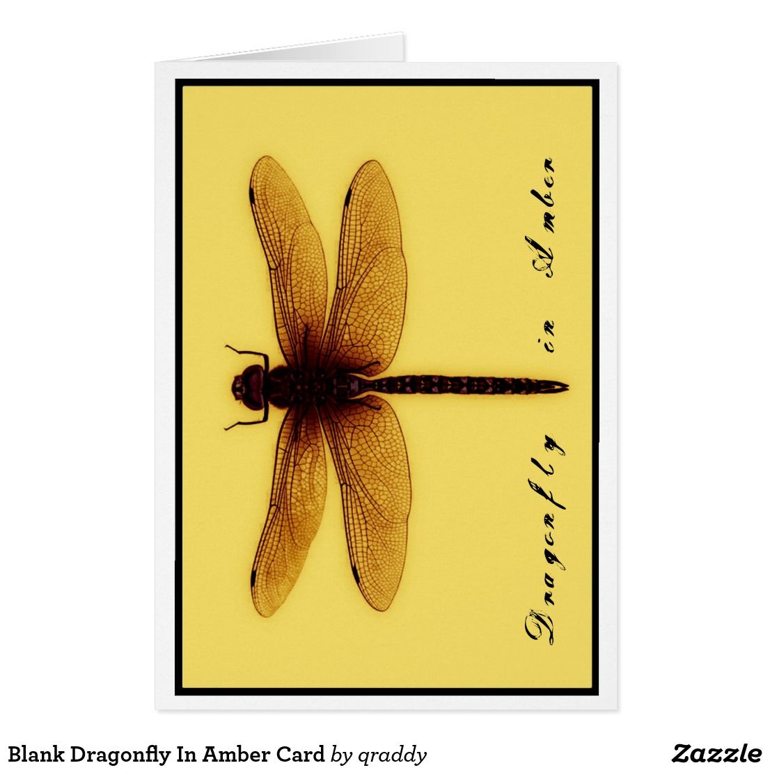 Blank Dragonfly Card Zazzle Com Dragonfly In Amber Cards