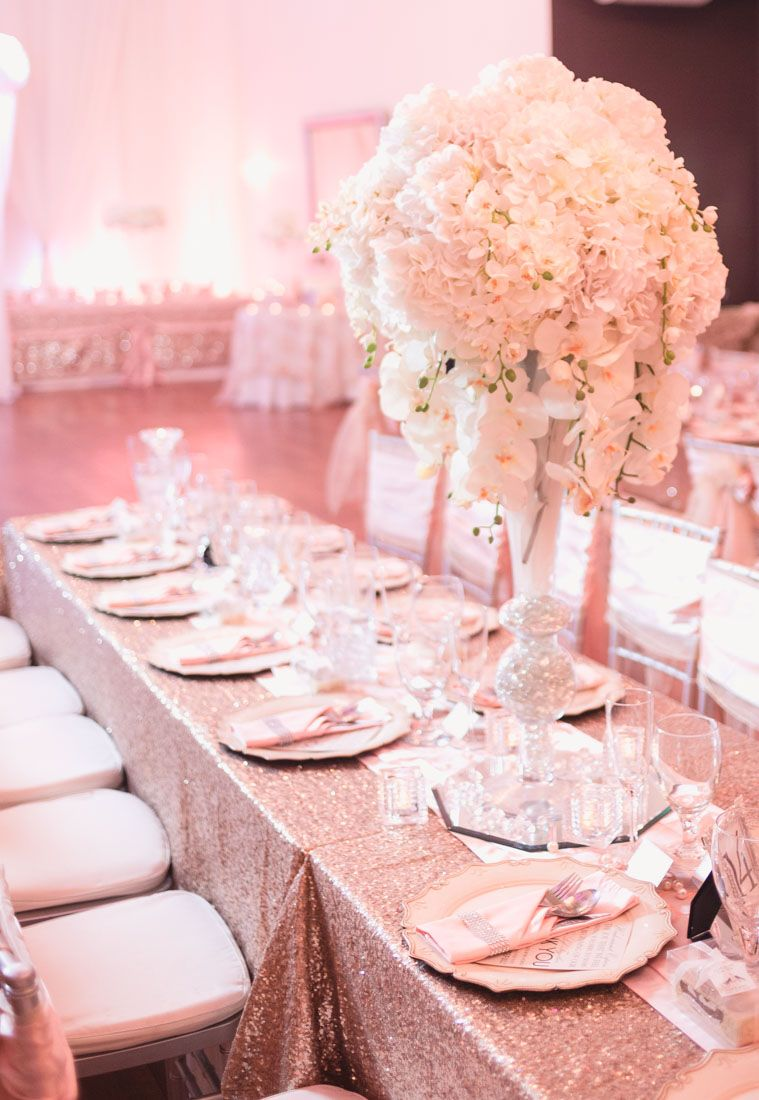 Top Orlando wedding photographer and videographer captures blush ...