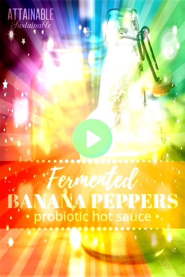 banana peppers and then follow this hot sauce recipe to make a DIY c   Fermenting for Food Preservation  Health Ferment hot banana peppers and then follow this hot sauce...