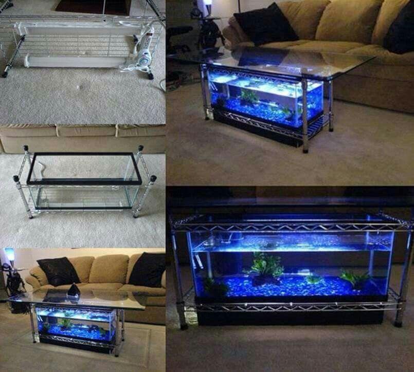 Aquarium Im Wohnzimmer Tisch
