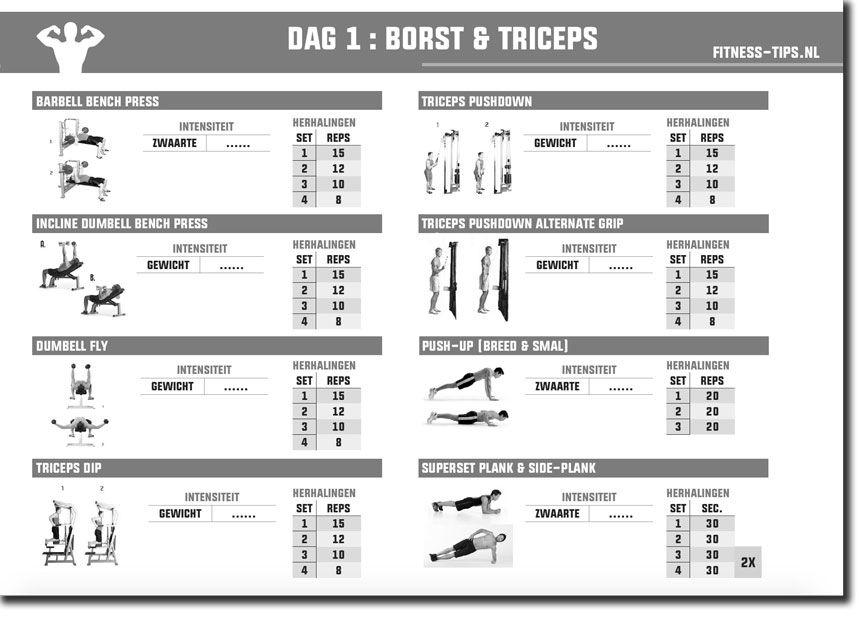 Fitness schema: download nu gratis jouw schema! - FIT.nl