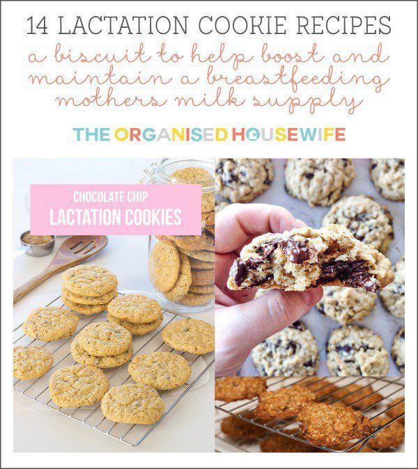 14 lactation cookie biscuit recipes