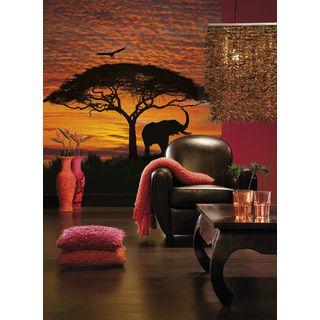 Fototapete African Sunset 194x270 cm | Fototapete