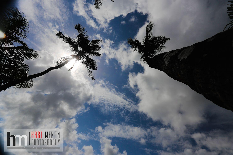 Hari Menon Grab Your Dream Season 2 Fab50 Pinterest Travel