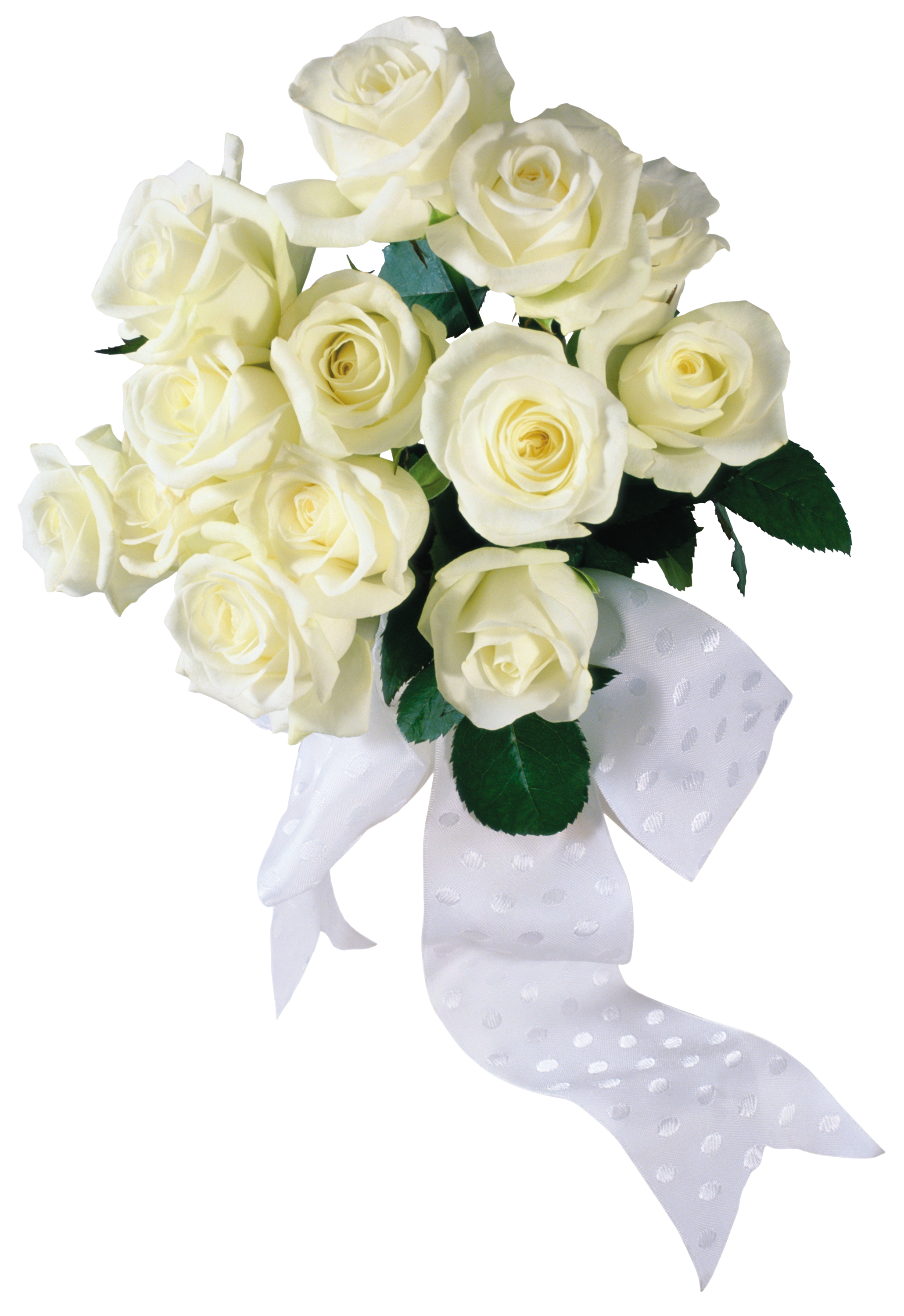 Pin by susie king on transparent images pinterest white roses just married white roses cgi white people wedding izmirmasajfo Images