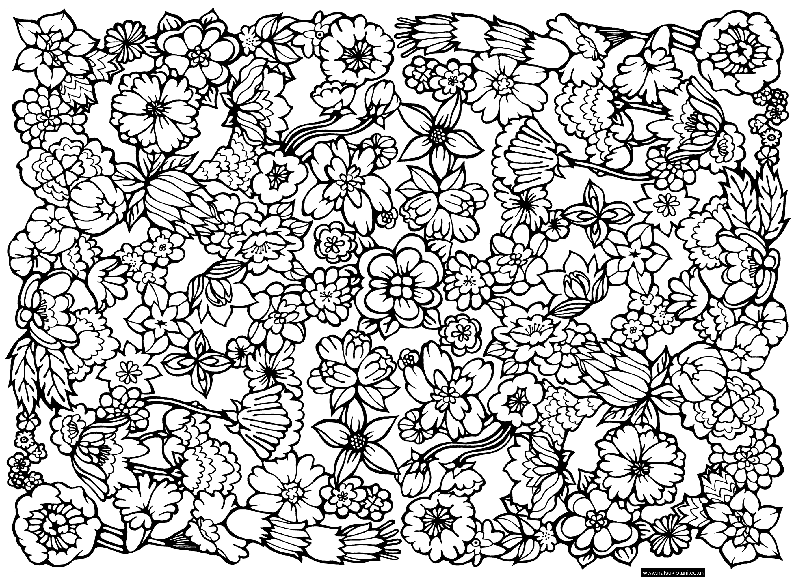 Abstract flower coloring pages - Flowers Coloring Page