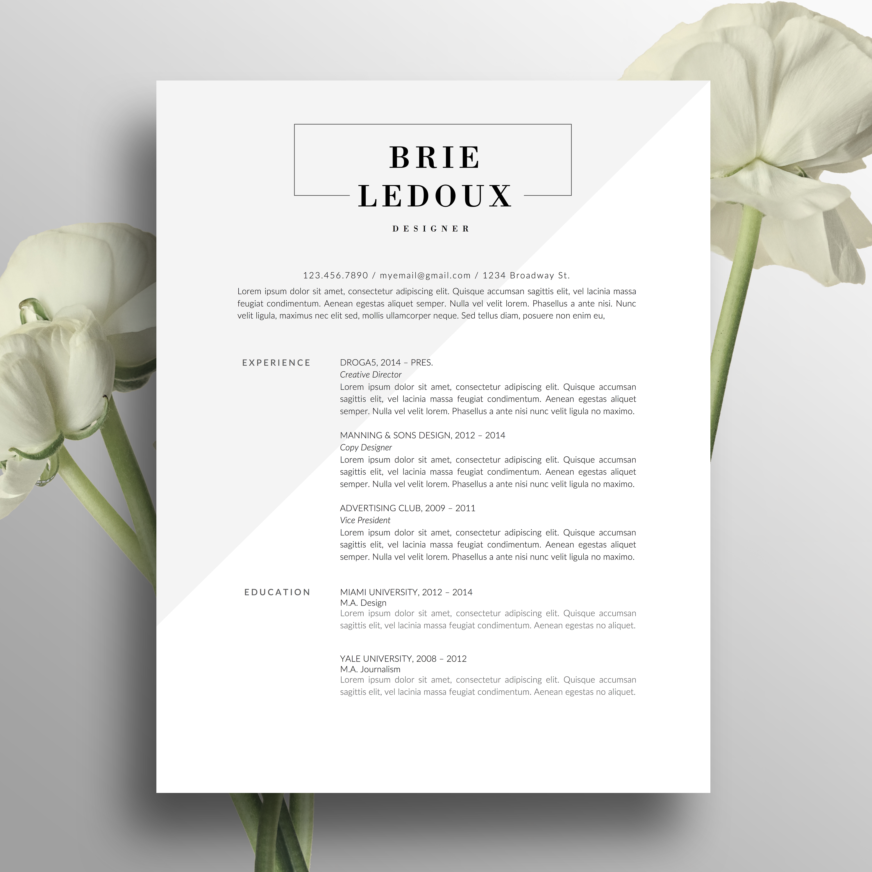 professional resume template creative resume design modern 2