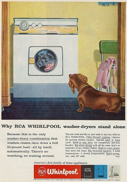 Pin By Joanne On Vintage Laundry Day Pinterest Dachshund Dogs