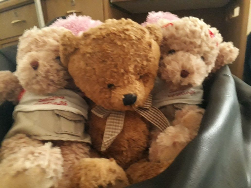 Teddy bear toys images  Pin by Saniya Agarwal on Soft toys  Pinterest  Toy