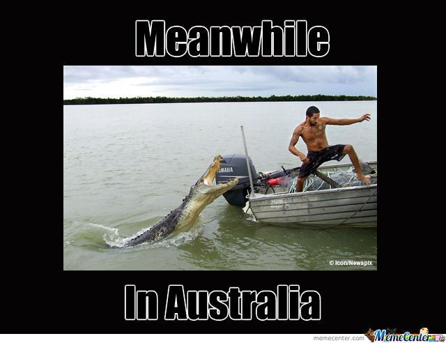 Tours And Attractions Australia New Zealand Australia Funny Australia Animals Scary Meanwhile In Australia