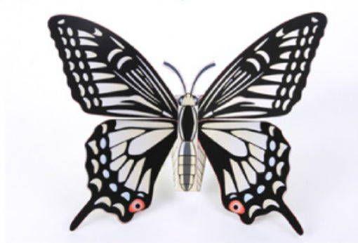 D Butterfly Paper Model Free Template Download  HttpWww