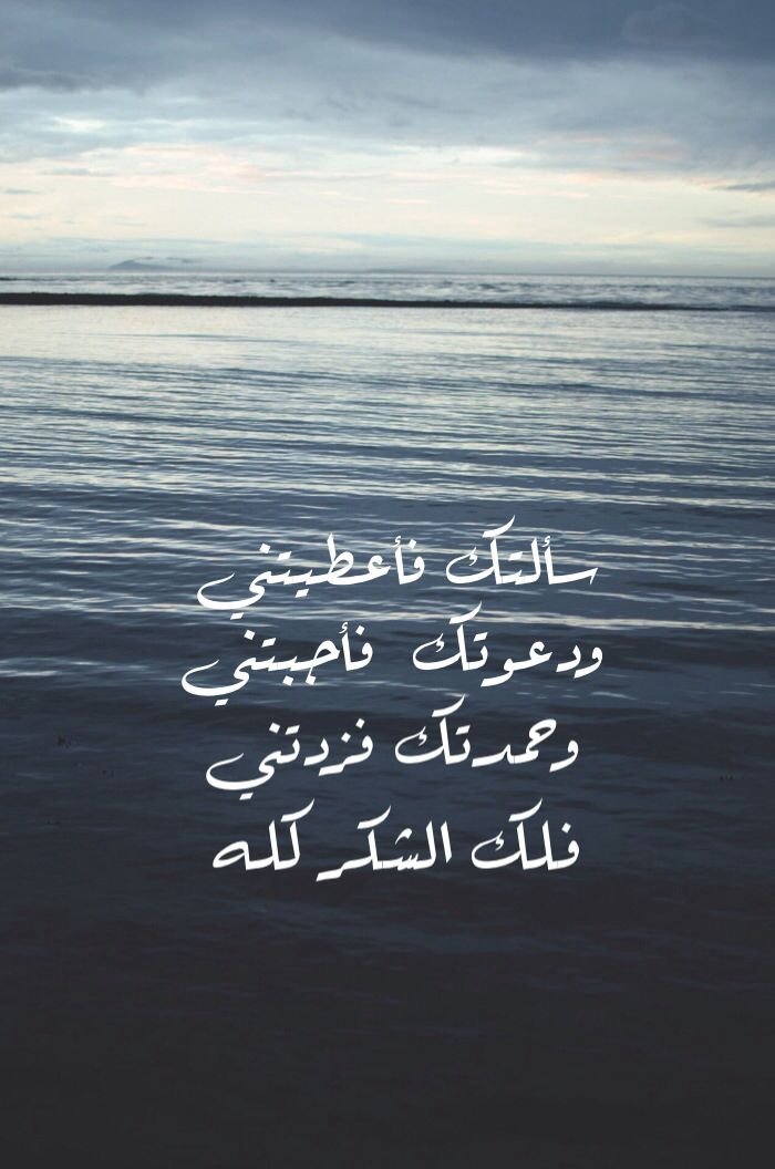 Untitled Quotes For Book Lovers Islamic Quotes Wisdom Quotes Life