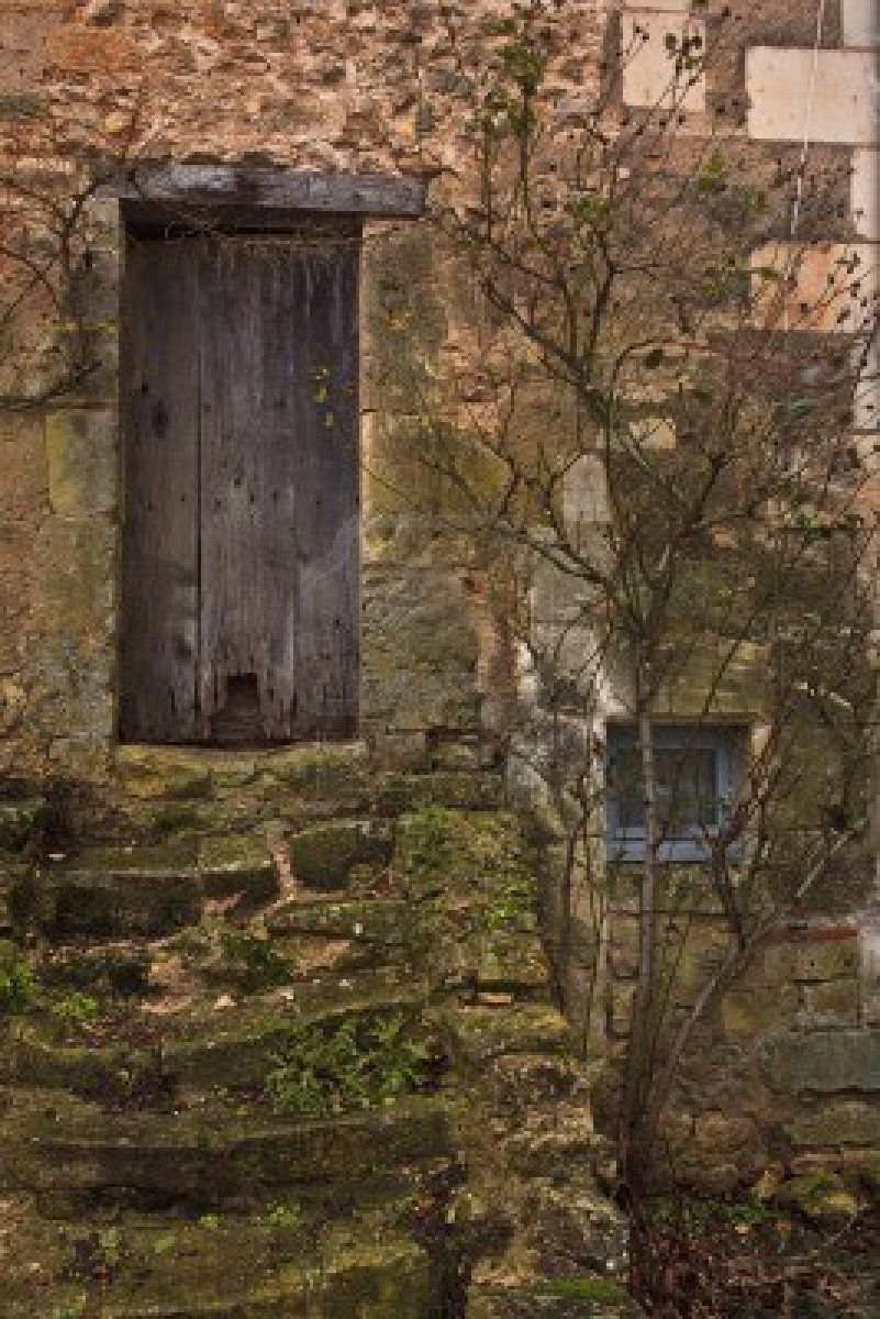 Photo of mossy steps and wooden door