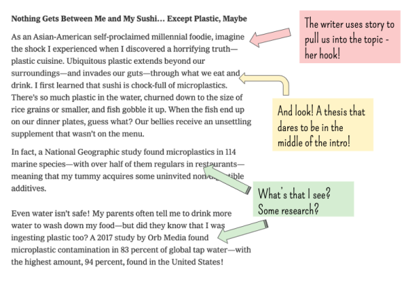 Three Reason We Should Stop Teaching The 5 Paragraph Essay And What Can Do Instead Teacher Talk Food Additive