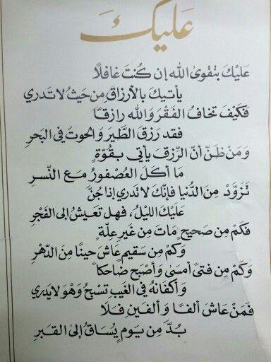 Pin On Basra Hameed