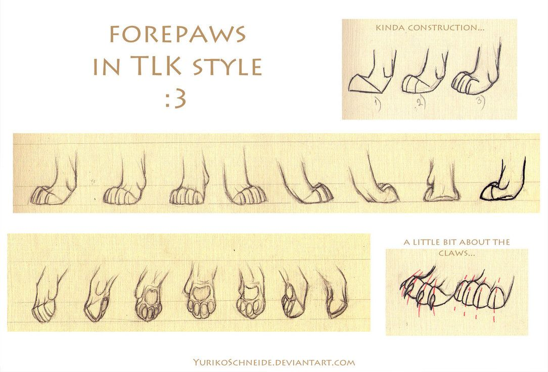 Paw tutorial | Drawing and painting | Pinterest | Character design ...