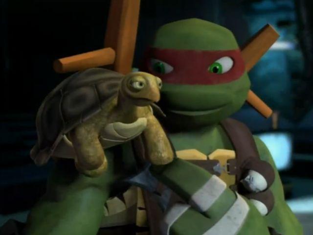 Which Teenage Mutant Ninja Turtle Are You Most Like Tmnt
