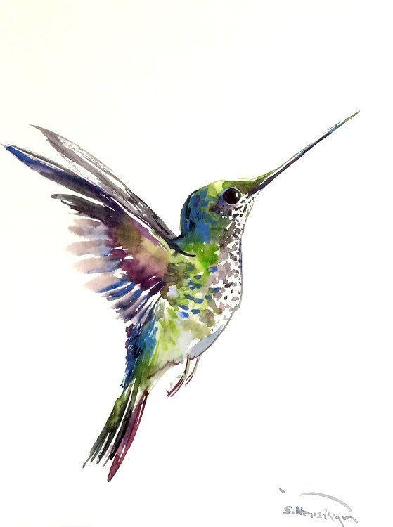 Aquarell Kolibri Kolibri Malerei Kolibri Tattoo Aquarell