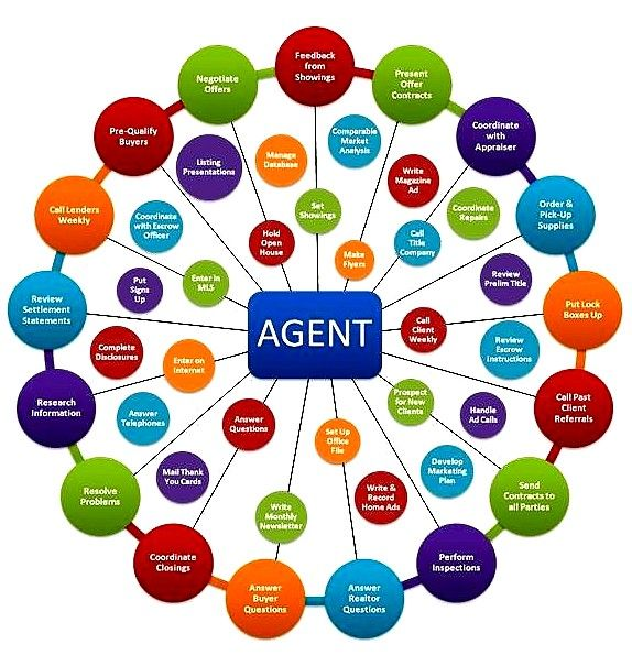 Real Estate Agent To Do Chart Showing A Few Of The Typical Responsibilities Realtor Realestate Real Estate Infographic Real Estate Articles Estate Agent