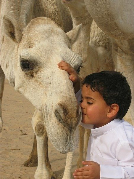 """* * CAMEL: """" Yer de cutest child I've seen in a while... gentle heart you have too."""""""