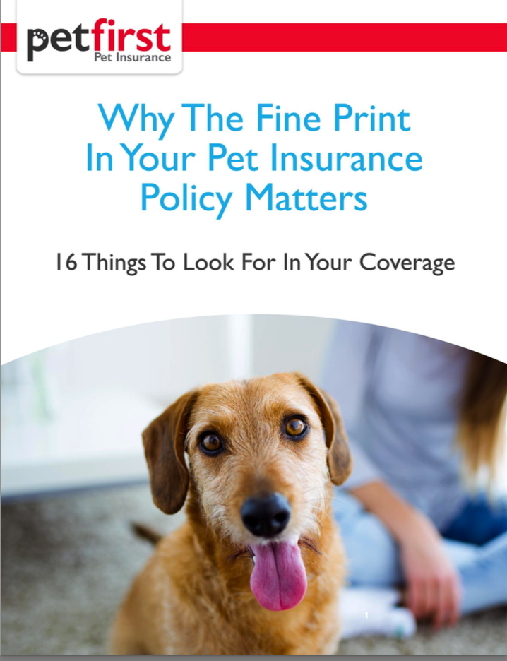 Why The Fine Print In Your Pet Insurance Policy Matters With