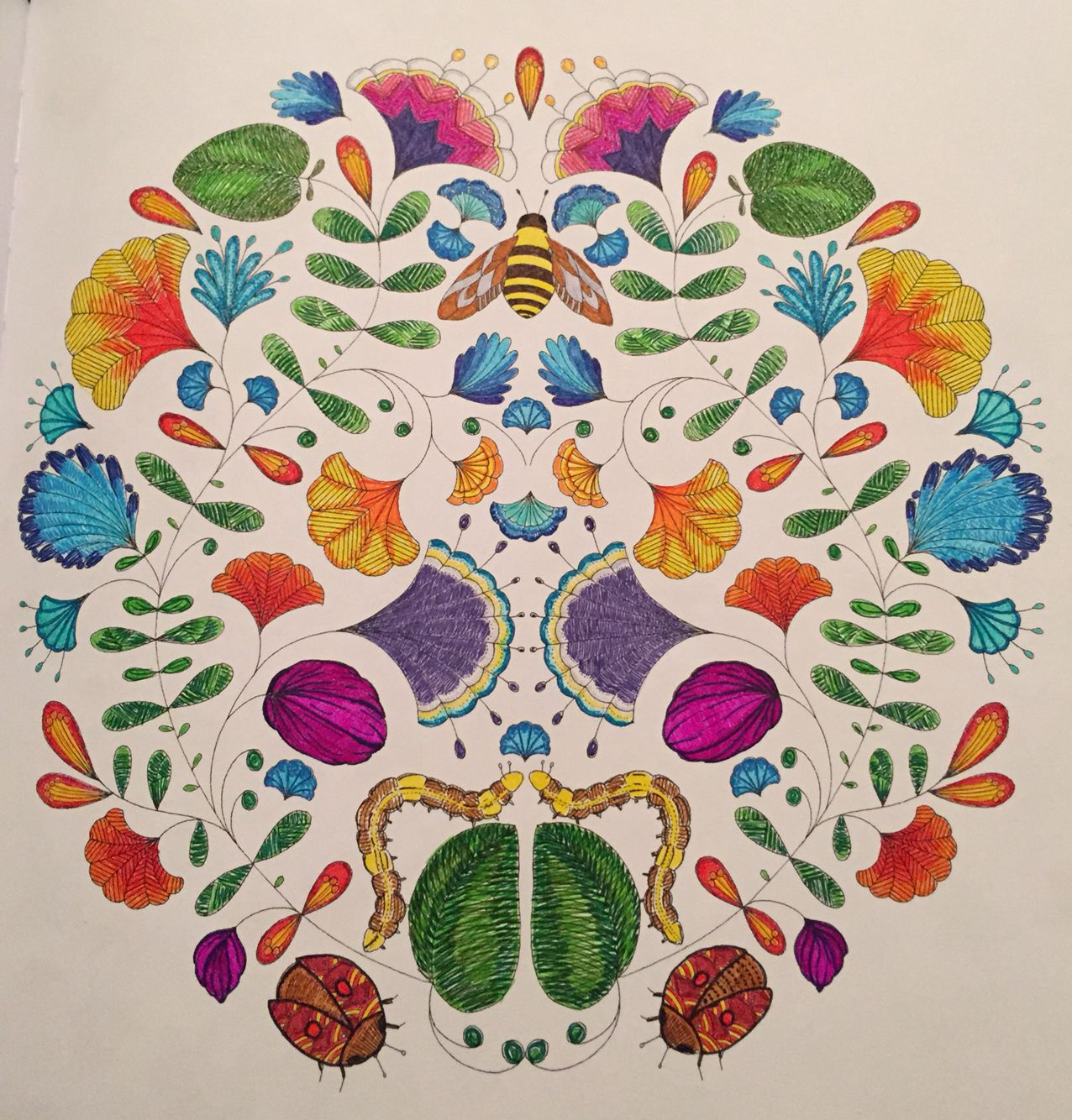 My first colouring in - adult colouring book Animal Kingdom by Millie Marotta