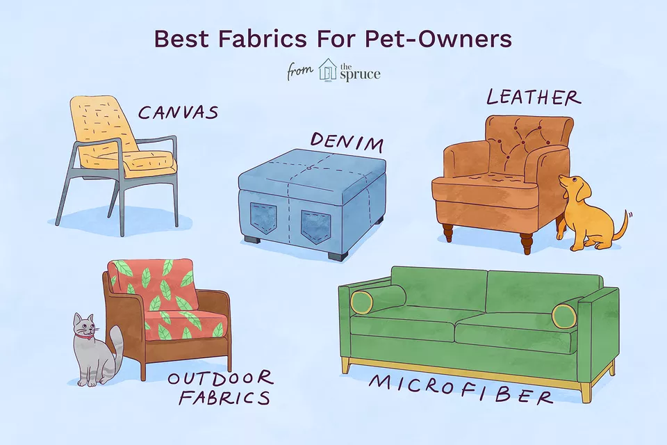 Keep Your Home Fresh With 5 Pet Friendly Fabrics Pet Friendly Fabric Pet Friendly Living Room Pet Friendly Furniture