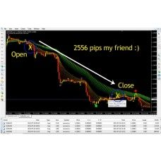 Forex Pro Forex Trend Tracker Secrets Trading Strategy Bonus