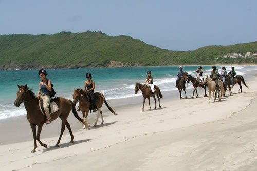 Horse Riding On The Beach In St Lucia