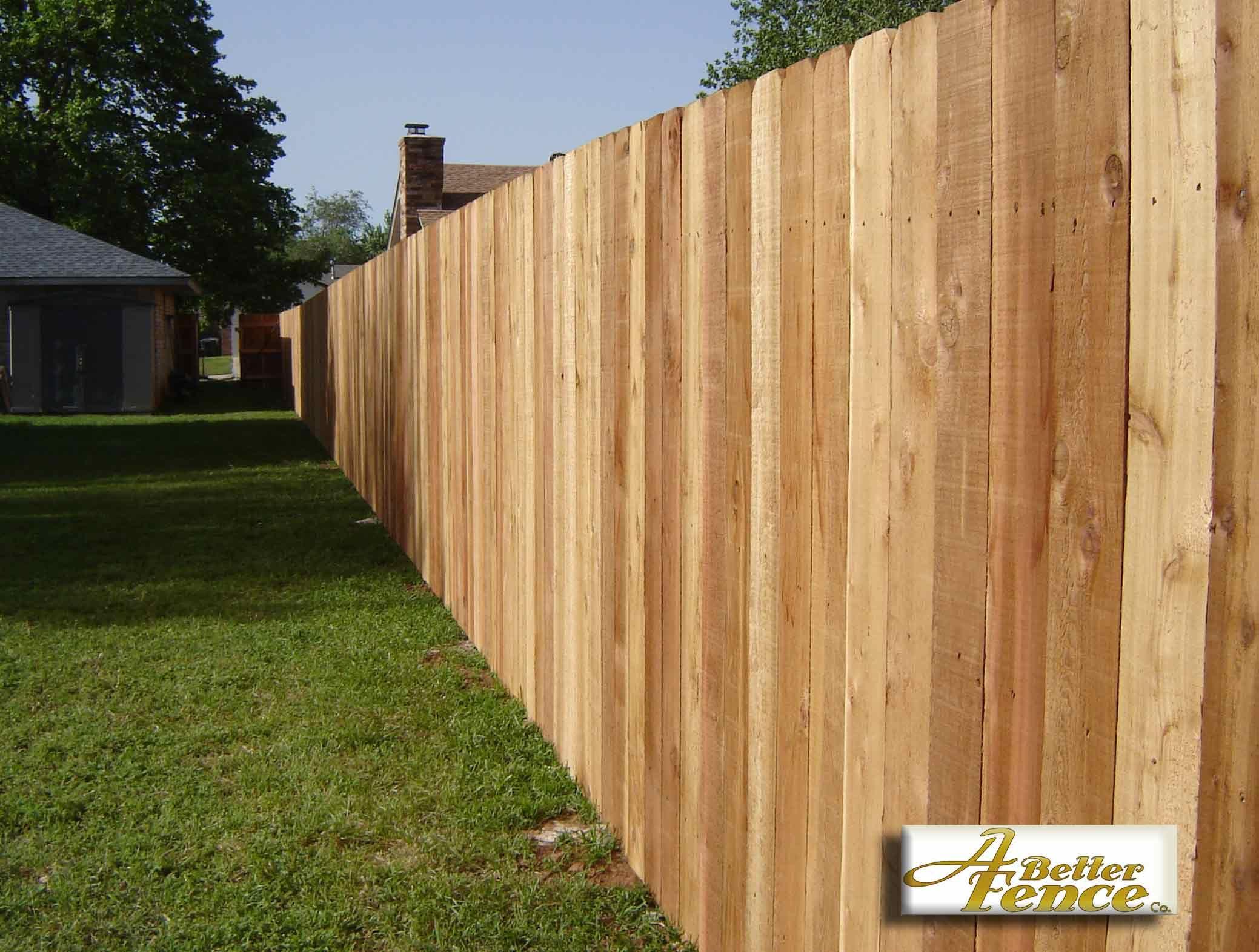 A beautiful 78 x 6 solid board western red cedar privacy fence a beautiful x solid board western red cedar privacy fence baanklon Gallery