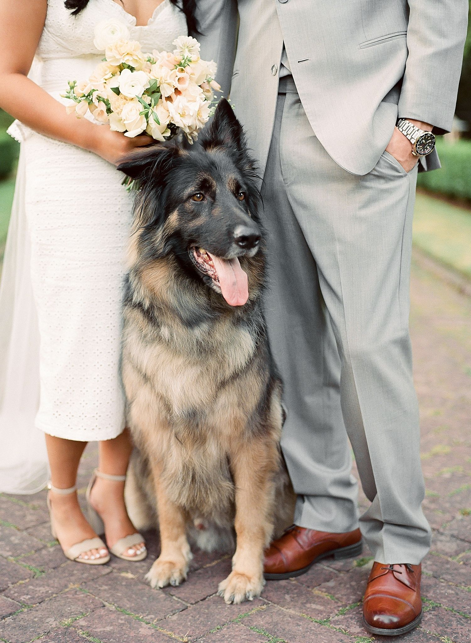 Incorporating pets into your wedding day Gothic wedding