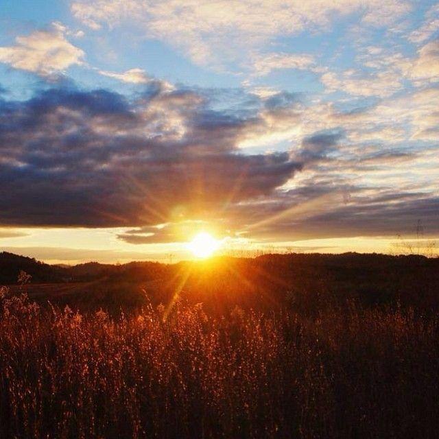 Good morning ☀️⛅️ #Padgram