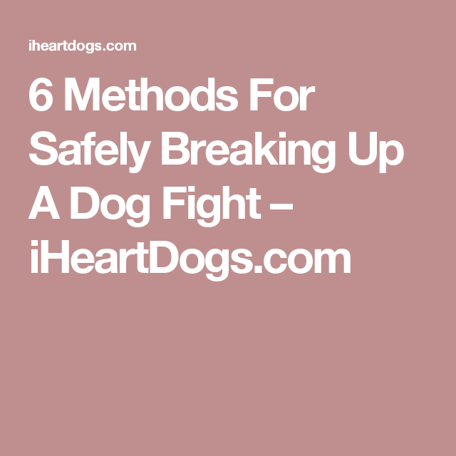6 Methods For Safely Breaking Up A Dog Fight – iHeartDogs.com