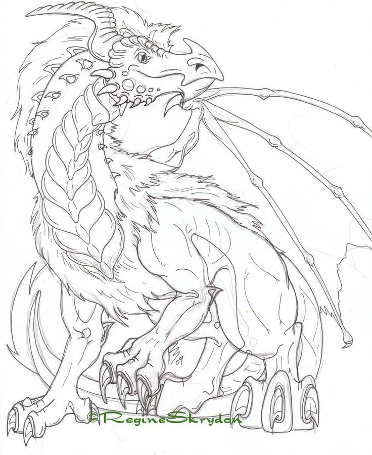Dragon coloring pages for adults to download and print for free ...