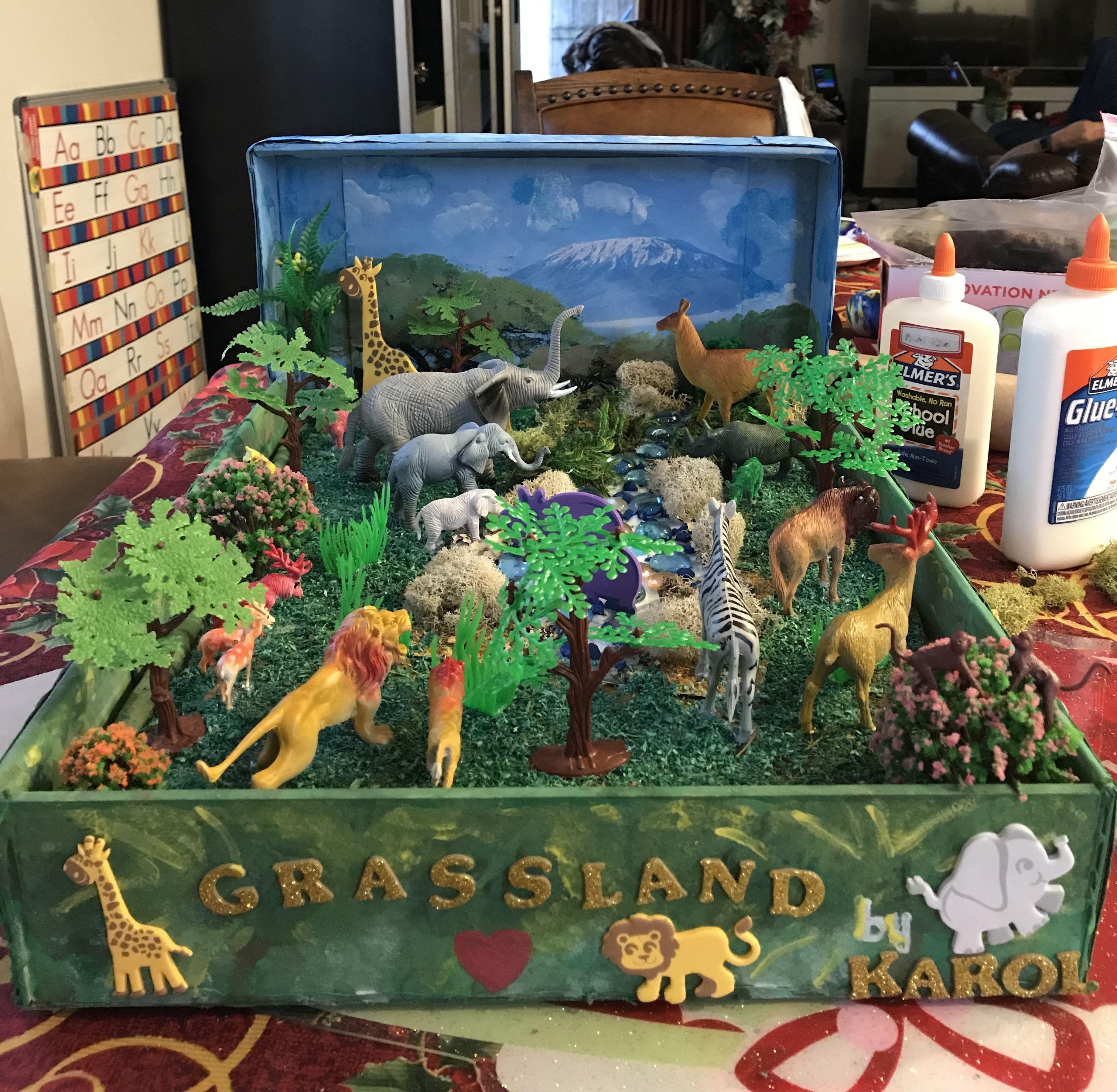 Kids Diorama With Details: Our Grassland Diorama