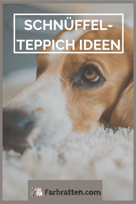 Schnuffelteppich Ideen In 2020 Schnuffelteppich Teppich