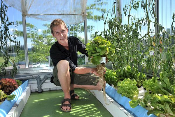telhados verdes: hortas urbanas na suíça