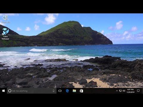 Push Video Wallpaper Full Version Free Download Daanipc Windows 10 Windows Wallpaper