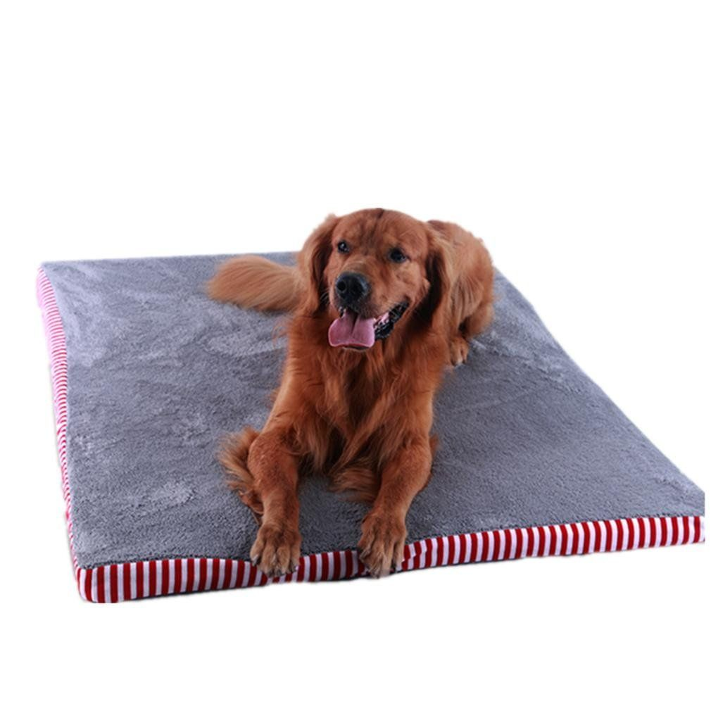 Autumn and Winter Red Pet Pad AntiBite NonStick Hair Can