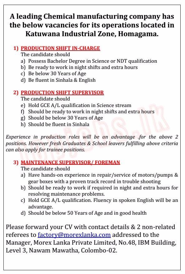 Vacancy Advertisement Advertising Bachelors Degree Job