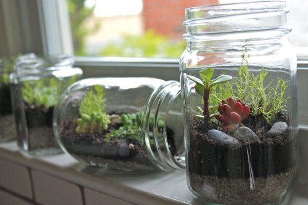 Fensterbank Deko Mit Pflanzen Die Einen Kleinen Garten Erschaffen Flaschengarten Terrarium Ideen Pflanzen