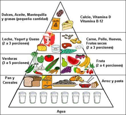 Nutricion para deportistas alto rendimiento