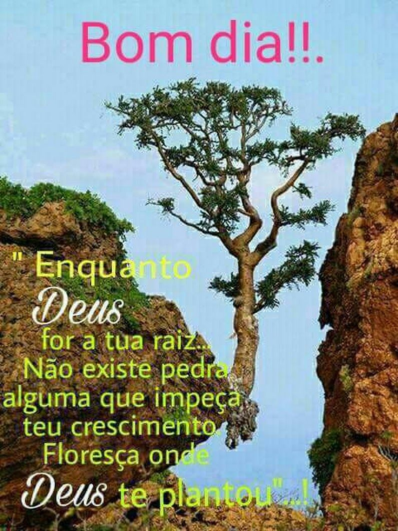Bom Dia Abençoado Domingo Li Silva Google Mensagens Jesus