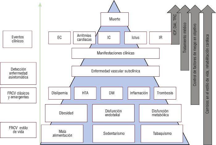 enfermedades cardiovasculares factores de riesgo diabetes