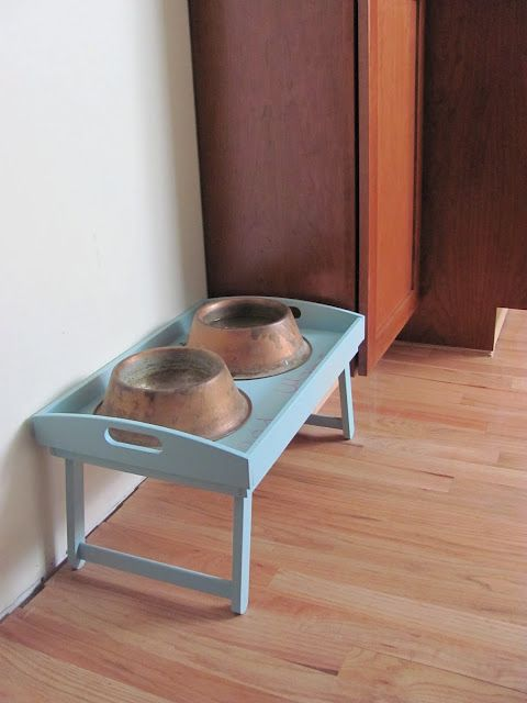 DIY pet food tray. Could do this for the cats!