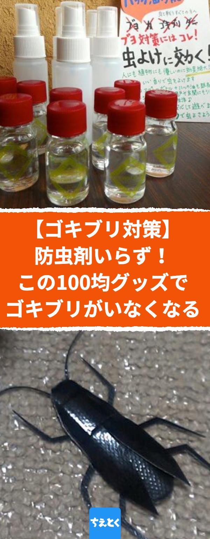 ゴキブリ対策 市販の防虫剤は要らない 100均で買えるアレを置くとゴキブリがいなくなる アロマオイルセットとハッカ油を使った最強ゴキブリ対策 ゴキブリ 対策 アロマオイル アパート ハッカ油 虫除け 防虫 ゴキブリ ハッカ ゴキブリ ハッカ油
